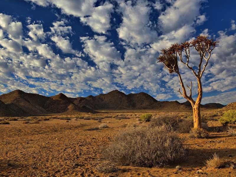 weltweiser · Handbuch Fernweh · Auslandsjahr · Südafrika